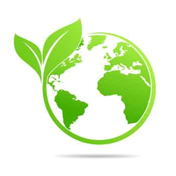 Team Earth Created by Conservation International