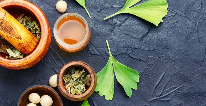 Help Your Fading Memory and More with Ginkgo Biloba