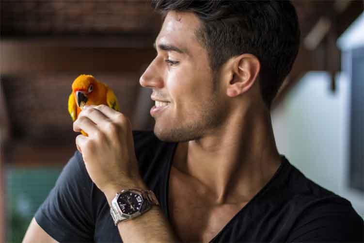 Pet Bird Care