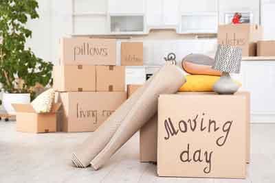 Preparing for the move