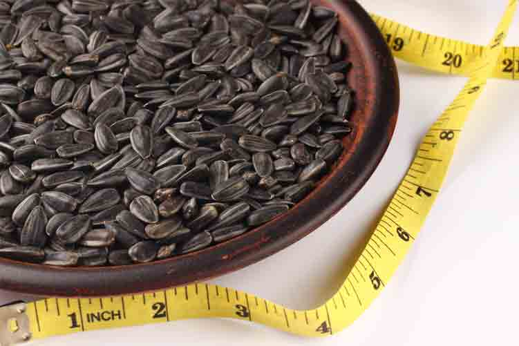 Why Choose Sunflower Seed for Weight Loss
